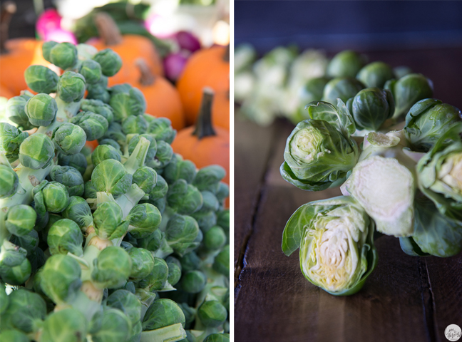 fall autumn brussels sprouts